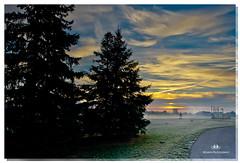 NOVEMBER 2016  NM1_1832_016563-22 (Nick and Karen Munroe) Tags: nikon1424f28 nickmunroe nikon nickandkarenmunroe nickandkaren nikond750 karenick23 karenandnickmunroe karenick karenmunroe karenandnick munroedesignsphotography munroedesigns munroephotography munroe beauty brampton ontario canada clouds colour colors fall fallcolors fallsplendor foliage trees tree dawn sunrise landscape
