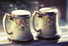 (melike erkan) Tags: retro vintage old antique saltpepper sp saltandpepper nippon nipponchina floral bokeh dof pretty window windowsill