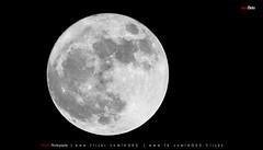 Super Moon (AQAS) Tags: supermoon moon jungle landscape sudhangali kashmir ajk pakistan