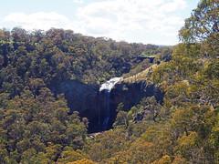 Ebor Falls (Lower) (Kaptain Kobold) Tags: kaptainkobold scenery landscape green nsw australia waterfall falls ebor