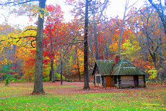 Cabin #painting (Stephenie DeKouadio) Tags: canon outdoor rockcreekpark art artistic washington washingtondc dc color colour colorful autumn trees tree beautiful beauty painting house light