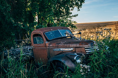 Bones Exposed (Pedalhead'71) Tags: parvin washington abandoned truck palouse
