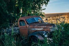 Bones Exposed (Pedalhead'71) Tags: parvin washington abandoned truck palouse