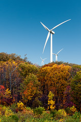 Wind Turbines at Work (Sky Noir) Tags: blue trees sky usa west green fall photography virginia us energy technology unitedstates wind unitedstatesofamerica sunny science clean clear friendly electricity collectors sustainable renewable windpower turbines ecofriendly greenenergy environmentally efficient skynoir windelectric