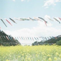*koinobori (fangchun15) Tags: 120 6x6 film yellow japan hasselblad fujifilm koinobori   rapessed pro160ns