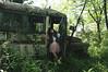 (yyellowbird) Tags: school selfportrait bus abandoned girl forest lolita cari