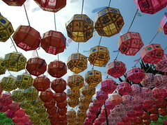 Temple Lanterns (citycrab) Tags: temple korea lanterns southkorea buddhasbirthday