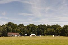 Cricket Pitch | Sheffield Park - 6 (Paul Dykes) Tags: uk england sussex eastsussex 18thcentury capabilitybrown sheffieldpark sheffieldparkgarden landscapegarden eighteenthcentury