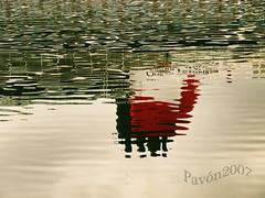 _8187864-QUEEN VICTORIA_1-F (pavon2007) Tags: espaa corua galicia queenvictoria trasatlantico cunnar