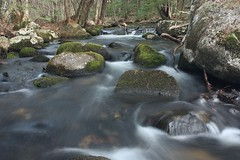 2014_0508Colcord-Pond-Brook0009 (maineman152 (Lou)) Tags: water spring stream maine may brook flowing longexposurephotography colcordpondbrook longexposurelongexposurephoto