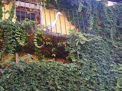 Monaco_Piera_07