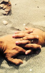 Married Couple Holding Hands on Sandy Beach (Image Catalog) Tags: love beach sand hands romance rings holdinghands weddingrings intimacy publicdomain