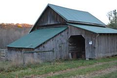 053 (dena429) Tags: old barn greenroof metalroof oldbarn leanto