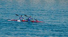 Trofeo Medaglia d'Argento Presidente della Repubblica 2016 [5] (Tiziano Caviglia) Tags: savona liguria rivieradellepalme darsena harbor vecchiadarsena mare sea marligure canottaggio canoeing trofeomedagliadargentopresidentedellarepubblica trofeomedagliadargentopresidentedellarepubblica2016 sport sports kayak canoa canoe