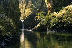 Autumnal Magic (gwendolyn.allsop) Tags: waterfall peace tranquil nature eagle creek punchbowl falls water foliage d5200 oregon