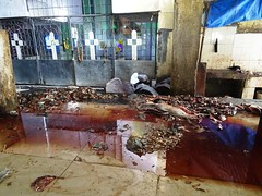 Dirty Fish Market (dirtypanjim8) Tags: joegoauk goa fish blood stinks