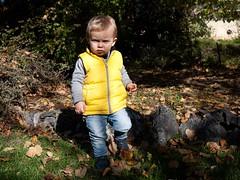 Sérieux (Dahrth) Tags: gf1 gf120 panasoniclumixgf1 lumixmicroquatretiers lumixμ43 micro43 microfourthirds raw bébé baby yellow doudoune dawn jardin garden serious fall autumn deadleaves feuillesmortes portrait