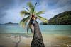 _BON9580_web (AlexDurok) Tags: trinidadtobago beaches sunset bluewater snorkelling rasta englishmansbaybeach ansefourmi turtlebeach arnosvalehotel angelretreat castarabay castararetreats mantaray sheppysautorental rainforest pigeonpoint englishman'sbay roxborough sandypointbeachclub