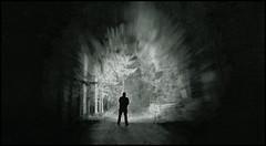 In the shadows (SurfacePics) Tags: badessen wittlage eielstdt wiehengebirge altkreiswittlage landkreisosnabrck lkos niedersachsen lowersaxony deutschland germany europa europe nacht nachtaufnahme nachtfoto night nightshot langzeitbelichtung wald forest darkness dunkelheit ledlenser ledlenserx21r torchlight taschenlampe blackwhite blackandwhite schwarzweis sw einfarbig monochrome amazing stunning tumblr instagram surfacepics sonyalpha77ii sonyalpha cam photo photography foto oktober 2016 wiehenhorst eielstdterschlucht