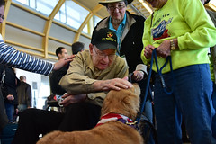 Dozier, Ethan 20 White (indyhonorflight) Tags: ihf indyhonorflight angela napili ethandozier abledcaarrival public 20 white ethan dozier