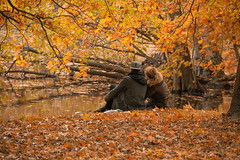 Autumn (michael_hamburg69) Tags: hannover germany deutschland lowersaxony niedersachsen georgengarten nordstadt herrenhäusergärten laub herbstlaub couple blätter lovers autumn foliage pond