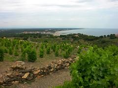 050614 0504 Cap Drouats2 (Jaap~Verbeek) Tags: nikoncoolpix8700 strand vacantie frankrijk pyrenesorientales uitzicht atb argelssurmer wijn