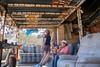 11-4-16 Cabin Ride-119 (Cwrazydog) Tags: arizona trailriding
