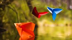 Paper Planes (Ricardo José Gonçalves) Tags: paperplanes lagodosmosqueiros sintra pentacon50mm18 ricardogonçalves origami macrodreams macro