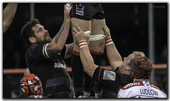 saracens v gloucester (jdl1963) Tags: saracens gloucester rugby union aviva premiership line out sport