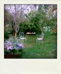 (Cristina Birri) Tags: giardino poladroid udine friuli autunno autumn