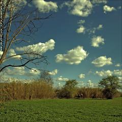 Mis Vecinos (m@tr) Tags: barcelona sky espaa naturaleza clouds olympus cielo nubes reportaje misvecinos epl1 mtr marcovianna fotosderipollet zuikoed1442mmf3556 ripolletnatura