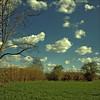 Mis Vecinos (m@®©ãǿ►ðȅtǭǹȁðǿr◄©) Tags: barcelona sky españa naturaleza clouds olympus cielo nubes reportaje misvecinos epl1 m®©ãǿ►ðȅtǭǹȁðǿr◄© marcovianna fotosderipollet zuikoed14÷42mmf35÷56 ripolletnatura