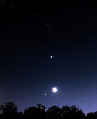 Planet Convergence March 25, 2012 (mjkjr) Tags: longexposure atlanta sky moon canon ga 50mm venus atl 50mm14 astrophotography astronomy nightsky jupiter treeline f8 30sec pleiades cowetacounty ef50mmf14usm newnanga canon5dmkii 5dmkii planetsaligning mjkjr httpwwwflickrcomphotosmjkjr 3252012 march252012 marchconvergence march25convergance march25sky planetconvergencemarch2012