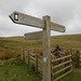 Pennine Bridleway - Mary Towneley Loop Split
