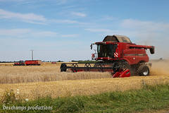 Moisson 2012 (Deschamps productions) Tags: wheat harvest case combine harvester tracteur ih benne beauce moisson bl batteuse 8120 9230 moissonneuse