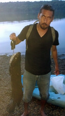 Snakehead (mddnrfish) Tags: nick vega courtesy