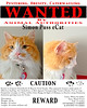 Wanted Poster - Simon Puss eCat - v (SouthernBreeze) Tags: trip travel family friends pet silly apple animal cat poster t fun photo al friend kat funny i5 huntsville joke fat alabama pussy kitty laughter wanted ios puss pest obese hsv iphone mbp southernbreeze 2013 cs5 ecat animule iphoneography