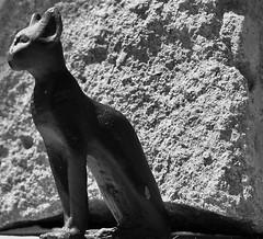Bastet (sue921) Tags: black rock cat bast egyptian britishmuseum bastet