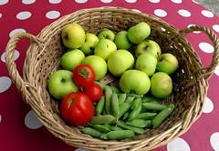 Was der Garten mir heute bescherte (cure di marmo) Tags: summer vegetables fruit garden tomatoes peas apples garten tomaten ernte erbsen pfel