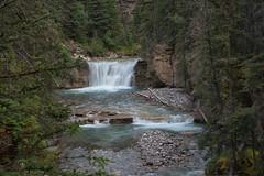Johnston Creek (dbushue) Tags: trees canada nature landscape waterfall nikon rocks canyon hike trail alberta banffnationalpark canadianrockies 2014 johnstoncanyon dailynaturetnc14 dailynaturetnc15