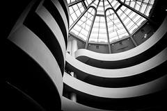 The Rib Cage (DobingDesign) Tags: newyorkcity people blackandwhite bw usa building window glass lines architecture modern contrast america stripes curves ribs bones guggenheim organic ornate modernarchitecture modernartmuseum interiorarchitecture structured iconicbuilding americanarchitecture