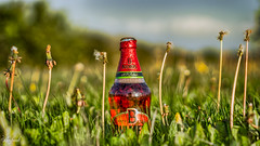 Sneaky Cider (C.A.Photogenics) Tags: plant field grass sunshine cider hdr bulmers