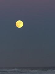 Super Moonrise Over the Ocean (Paul Henegan) Tags: 11954 atlanticocean montaukny supermoon bluehour moonrise wow