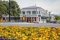 Tennyson Street (zzrbell) Tags: artdeco napier newzealand hawkesbay nz