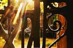 Existe un lugar olvidado entre tus sueos (mauricio frijol) Tags: sol antiguo olvido old puestadesol nikond7100 nikonistas sun time tiempo sueos dreams