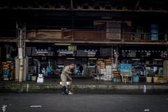 Tsukiji fish market, Tokyo (Sasha Popovic | Photography) Tags: ストリートフォトtsukijifishmarket tokyo japan partymatsurinaokirteamgabigarciammawmmammaprogab ã¹ããªã¼ããã©ãtsukijifishmarket partymatsurinaokirteamgabigarciammawmmammaprogabigarciajiujitsulovejapanmmajprizinffrizinæ°åæ¡ç¨æ°ååéæ±äººè¡¨åéãã¿ã³è¡¨åébotanbotanãã¿ã³nalupuloaohanasalonhairãã¢ã¹ã¿ã¤ã«ã·ã§ã¼ããã¢ãããããã¼ããã¼ãç¾år tsukiji market markets asia fish localfood 築地市場 triparoundtheworld rtw 2015 2016 world
