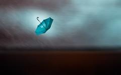 Trials and tribulation (Ans van de Sluis) Tags: umbrella storm landscape art fineart ansvandesluis trials tribulation autumn stormy wind blur