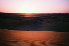 Wahiba Sands (cranjam) Tags: lomo lca lomography film slide xpro kodak elitechrome100 oman sultanateofoman middleeast wahibasands 1000nightscamp مخيم1000ليلة sharqiyasands desert deserto dunes dune sunset tramonto