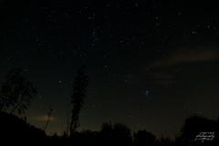 Skynight (Franck Planat) Tags: sky night etoiles ciel pliades nuit star stars