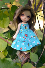 Zephyr (ladymadrigal80) Tags: pukifee pukifeecony cony fairyland bjd